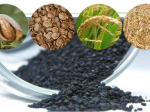 Valorización de residuos agrícolas en biocarbón activo para su uso en tratamiento de agua