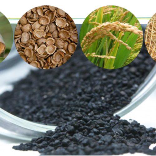 Valorización de residuos agrícolas en biocarbón activo