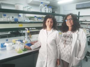 Convenio específico de Colaboración con la Universidad de Sevilla