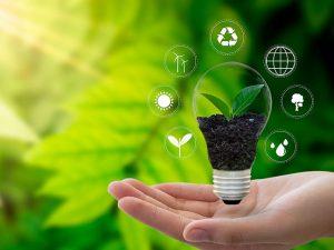 7 diferentes fuentes de energía renovable